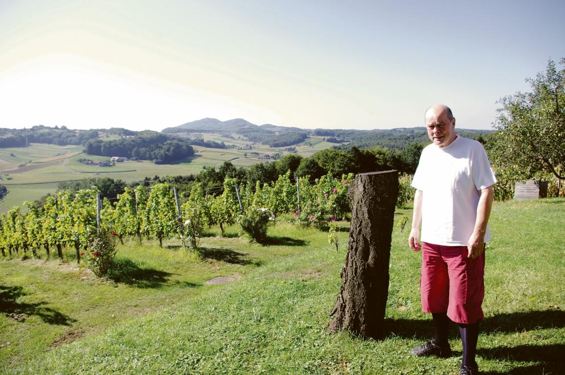 Inmitten der Hügel der Steiermark beschäftigt sich Wiener mit der Psychologie des Denkens.